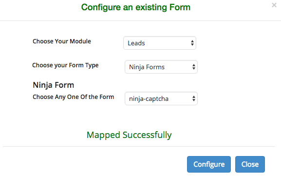 Successful form fields mapping with CRM fields